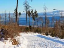 Wysokie Tatras góry &-x28; Vysoké Tatry&-x29; jest jak Szwajcarscy Alps tylko tani i dużo mniej zatłoczeni, zdjęcie royalty free