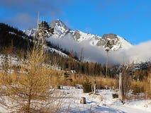 Wysokie Tatras góry Vysoké Tatry są jak Szwajcarscy Alps tylko tani i dużo mniej zatłoczeni, Chce znać jak patrzeją zdjęcie royalty free
