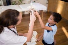 Wysokiego kąta widok chłopiec i kobiety terapeuta wskazuje przy sztucznym kręgosłupem fotografia royalty free