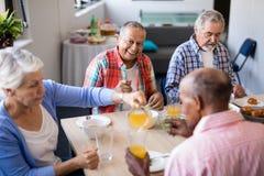 Wysokiego kąta widok kobiety porci napój starsi przyjaciele Zdjęcia Stock