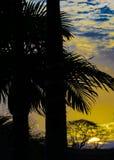 Wysokiego kontrasta krajobrazu zmierzchu scena Obrazy Royalty Free