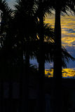 Wysokiego kontrasta krajobrazu zmierzchu scena Obraz Royalty Free