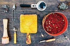 Wysokiego kontrasta mieszkanie kłaść z arfą, cranberries, stupą i etc, Obraz Stock