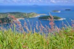 Wysokiego morza widoku punkt Fotografia Stock