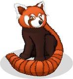 Wysokiej Jakości Czerwonej pandy kreskówki wektoru ilustracja Fotografia Royalty Free