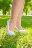 Wysokość Uzdrawia w trawie Fotografia Stock