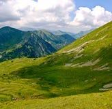 wysokogórska łąka Zdjęcie Royalty Free