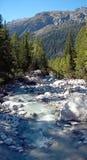 Wysokogórska rzeka robić od lodowa topi nawadnia przepływy chociaż las lokalizować w wysokogórskim regionie Chamonix w Francja zdjęcie royalty free