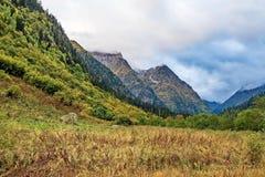 wysokogórski łąkowy lato Halny Altai niebieskie niebo białe chmury obrazy stock