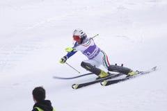 wysokogórski gius Nicole narciarstwo Zdjęcia Stock