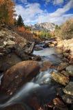 wysokogórskiej jesień lasowy strumień Fotografia Royalty Free