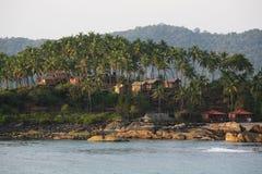 wysp drzewka palmowe Fotografia Stock