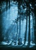 Wyspa cmentarz Zdjęcie Stock
