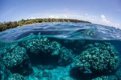 Wyspa i rafa Zdjęcie Royalty Free