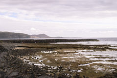 Wyspa Kanaryjska zdjęcie stock