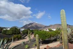 Wyspa Kanaryjska, Lanzarote Obrazy Stock