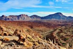 wyspa kanaryjska park narodowy teide Tenerife Zdjęcie Royalty Free