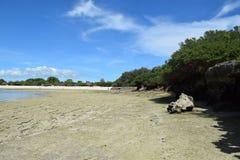 Wyspa Kwale i otaczanie na Zanzibar Fotografia Stock