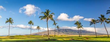Wyspa Maui, Hawaje Obrazy Stock