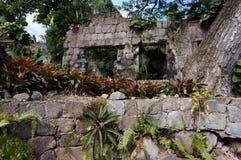 Wyspa Nevis Obrazy Stock