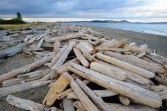 wyspa plażowy widok Zdjęcia Stock