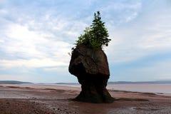 wyspa samotna Zdjęcie Royalty Free