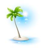 Strovok tropikalny z drzewkiem palmowym Obrazy Stock