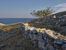 Wyspa w ranku świetle Fotografia Stock