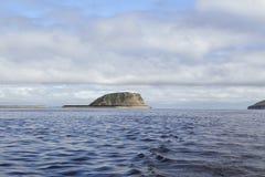 Wyspa w wielkiej rzece Lena rzeki delta Zdjęcia Stock