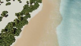 Wyspa wyrzucać na brzeg palmy i morze Atlantycka oceanu i nieba Piękna biała dzika plaża zdjęcie wideo