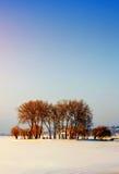 Wyspa z drzewami pośród zamarzniętego jeziora Zdjęcie Stock