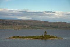 Wyspa z drzewem po środku jeziora Zdjęcie Royalty Free