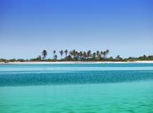 Wyspa z drzewkami palmowymi w oceanie fotografia stock