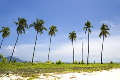 wyspy drzewa kokosowe Zdjęcia Royalty Free
