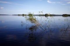wyspy duńskiej jezior krajobrazowej charakteru Wadden mały przypływu morza wilder wody Obrazy Stock