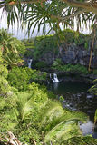 wyspy hawaii Maui baseny święte 7