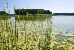 wyspy jezioro Zdjęcie Royalty Free
