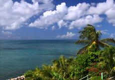 wyspy karaibskiej Kitts święty obrazy royalty free