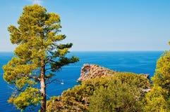 wyspy majorca Spain obraz royalty free