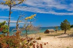 wyspy modrzewiowy olkhon drzewo Zdjęcia Royalty Free