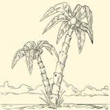 wyspy oceanu palmowy nakreślenie tropikalny ilustracja wektor