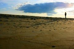 wyspy plażowa śliwka Obrazy Royalty Free