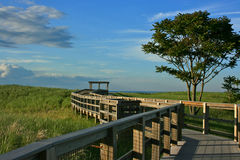 wyspy plażowa śliwka Obraz Royalty Free