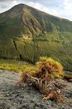 wyspy vulcano Fotografia Stock