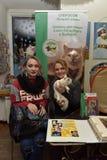 Wystawa i dystrybucja koty od schronienia Zdjęcie Stock