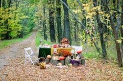 Wystrój dla jesieni fotografii projekta w lesie obrazy stock