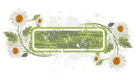 wystrój tła kwiaty crunch ilustracja wektor