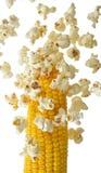 Wystrzał kukurudza który lata zdala od kukurydzanego cob Obrazy Stock