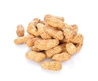 Wysuszeni arachidy na białym tle Zdjęcia Stock
