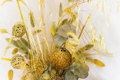 wysuszeni bukietów kwiaty Zdjęcia Royalty Free